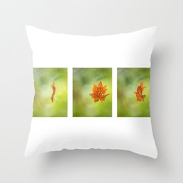 Leaf Spinning on a Spider's Silken Thread Triptych Throw Pillow