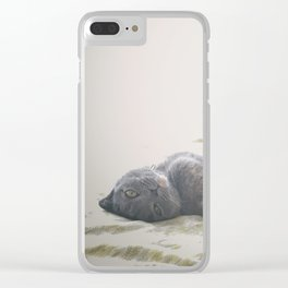 Beautiful gray Scottish Fold cat relaxing on a bed Clear iPhone Case