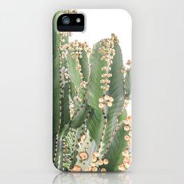 Giant Cactus iPhone Case