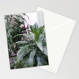 Monkey In Tree Stationery Cards