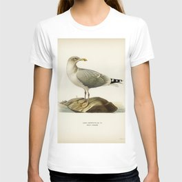 European herring gull (Larus argentatus) illustrated by the von Wright brothers T-shirt