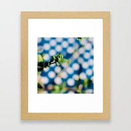 That Spring Feeling Framed Art Print