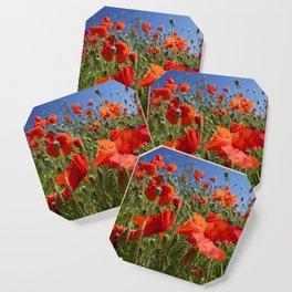 Red Poppy field Coaster