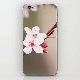 Plum's Promise iPhone Skin