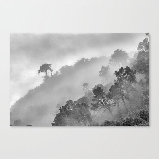 "BW.""Mountain light II"". Foggy forest. Canvas Print"