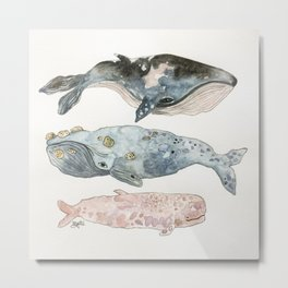 Stacked Watercolor Whales Metal Print