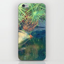Murky Waters iPhone Skin