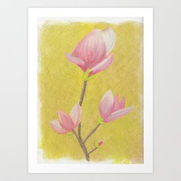 Magnolia with yellow background Art Print
