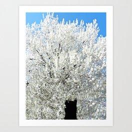 Trees Snow White Art Print
