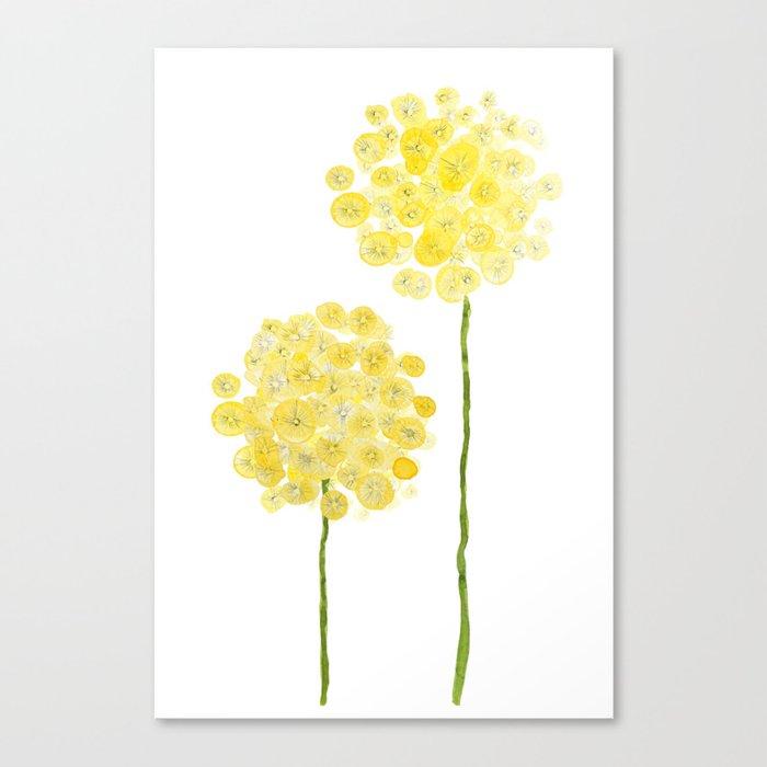 two abstract dandelions watercolor Leinwanddruck