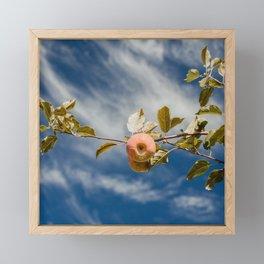 Autumn Apple V Framed Mini Art Print