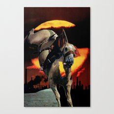 animal Canvas Print
