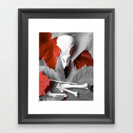 Skull and bones 004 Framed Art Print