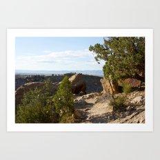 Desert Trail Art Print