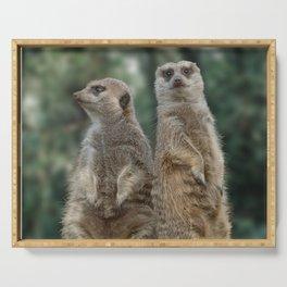 Meerkats: Best Friends Forever Serving Tray