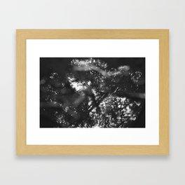 Broken Light II Framed Art Print