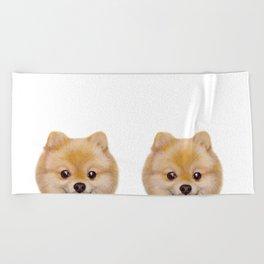 Pomeranian Dog illustration original painting print Beach Towel