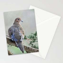Gentle Dove Stationery Cards