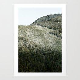 Snow Line Art Print
