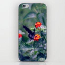 Wings of Paradise iPhone Skin