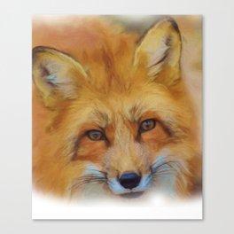 Fox in a close-up Canvas Print