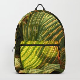 Avant-Garde, Radically Rogue Colorful Leaves Backpack