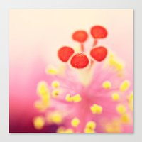 hibiscus Canvas Prints featuring Hibiscus by Laura Ruth