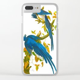 Columbia Jay Clear iPhone Case