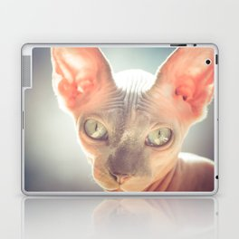 Floyd The Cat Laptop & iPad Skin