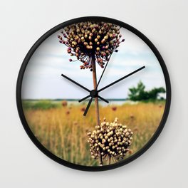 "Yorktown ""Onion"" Wall Clock"