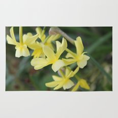 pretty light yellow garden flowers. floral photography. Rug