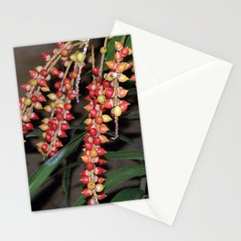 coffee plant (Bali, Indonesia) Stationery Cards