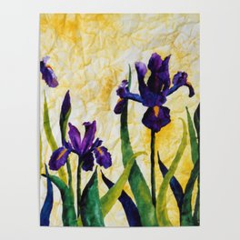 Watercolor Wild Iris on Wrinkled Paper Poster