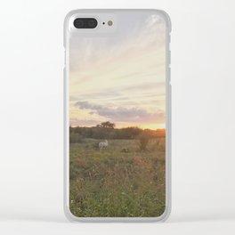 Magic hour Clear iPhone Case