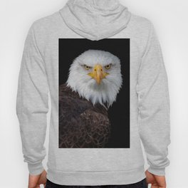 White Head Eagle with black background Hoody