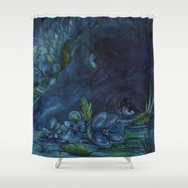 disappear Shower Curtain