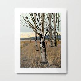 Conboy Lake 16 x 20 Metal Print