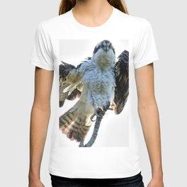 Osprey Posing T-shirt