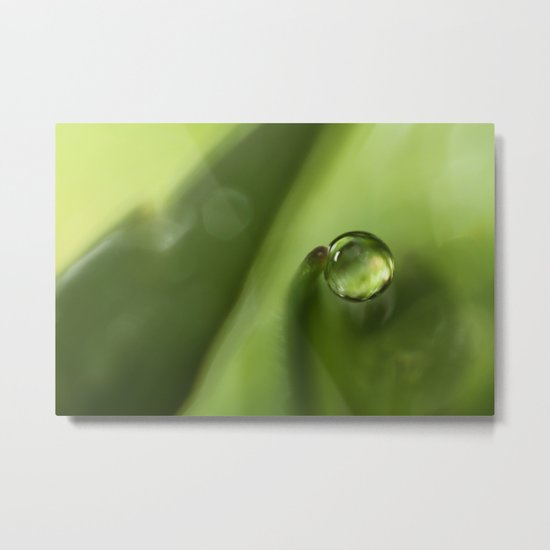 A Drop of Rain Metal Print