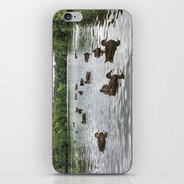 Ducks on the Lake iPhone Skin