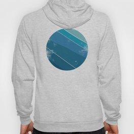 Planet Surf Vintage Hoody