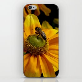 sunny wasp iPhone Skin