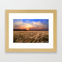 Sunset Harvest Framed Art Print