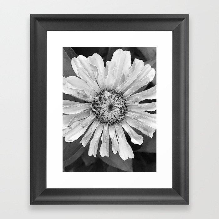 daisy, daisy Framed Art Print