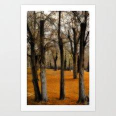 Dream Fall Art Print