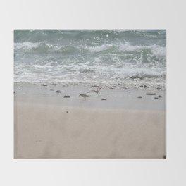 Seashore Sandpipers in tideland Throw Blanket