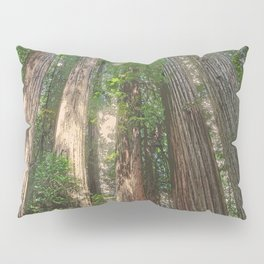 STOUT GROVE REDWOODS 4 LOOKING UP INTO THE TREES Pillow Sham