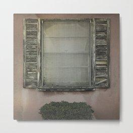 Window & Shrub #1 - 2015 Metal Print