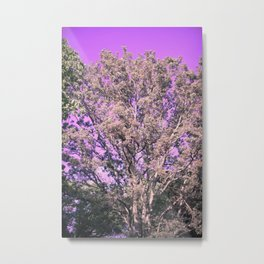 Winter Forest Of Silver Metal Print