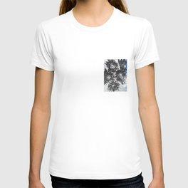 Dark Star Botanicals T-shirt